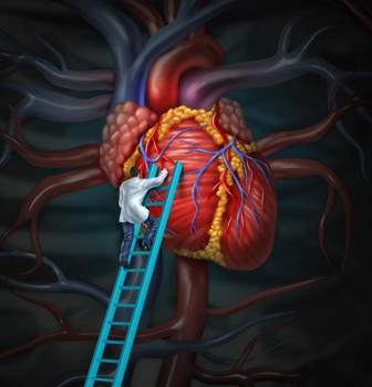 Heart doctor therapy health care and medical concept with a surgeon or cardiologist climbing a ladder to monitor and inspect the human cardiovascul