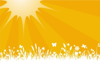Vector illustration of Peaceful sunset with Silhouette of flowers grass and  butterfly