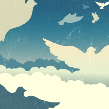 Doves in summer sky with clouds Vector