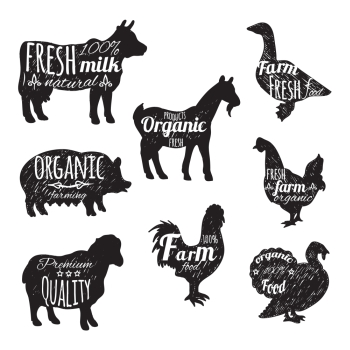Farm animals set chalkboard decorative icons with cow sheep goose isolated vector illustration