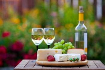 A wine  cheese garden party for two Shallow depth of field