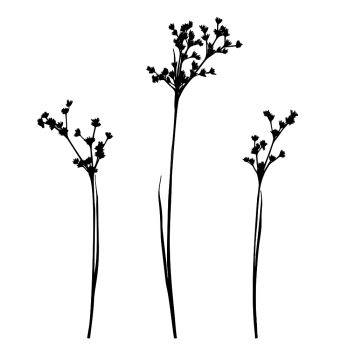 you searched for monochrome illustration of grass vector black silhouettes nature grass field monochrome illustration of grass vector silhouettes grass vector silhouettes