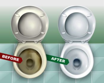 You searched for realistic dirty and clean toilets composition representing  two lavatory bowls before and after applying toilet bowl cleaner vector  illustration . dirty and clean toilets