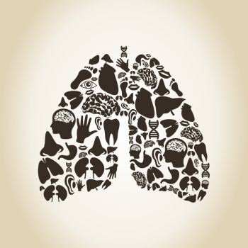Lungs made of body parts A vector illustration