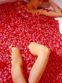 Woman in bathtub with flower petals