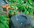 Water Spring With Stone Basin