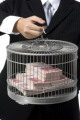 Businessman holding birdcage filled with money