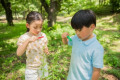 Japanese kids in a city park