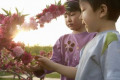 Young Children Touching Flowers In The Park