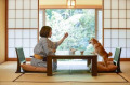 Japanese woman and Shiba Inu dog at traditional hotel