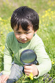 Japanese boy looking at flowers with magnifying glass