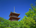 Three-storied Pagoda  Kiyomizu Temple  Kyoto  Japan