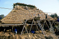 Fixing a Thatched Roof