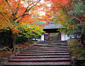 Traditional Japanese building in Autumn