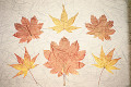 Painting of Maple Leaves