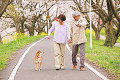Middle-Aged Couple Walking With Dog On Rural Path